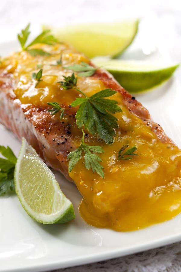 Download Atlantic Salmon Royalty Free Stock Image - Image: 16949516