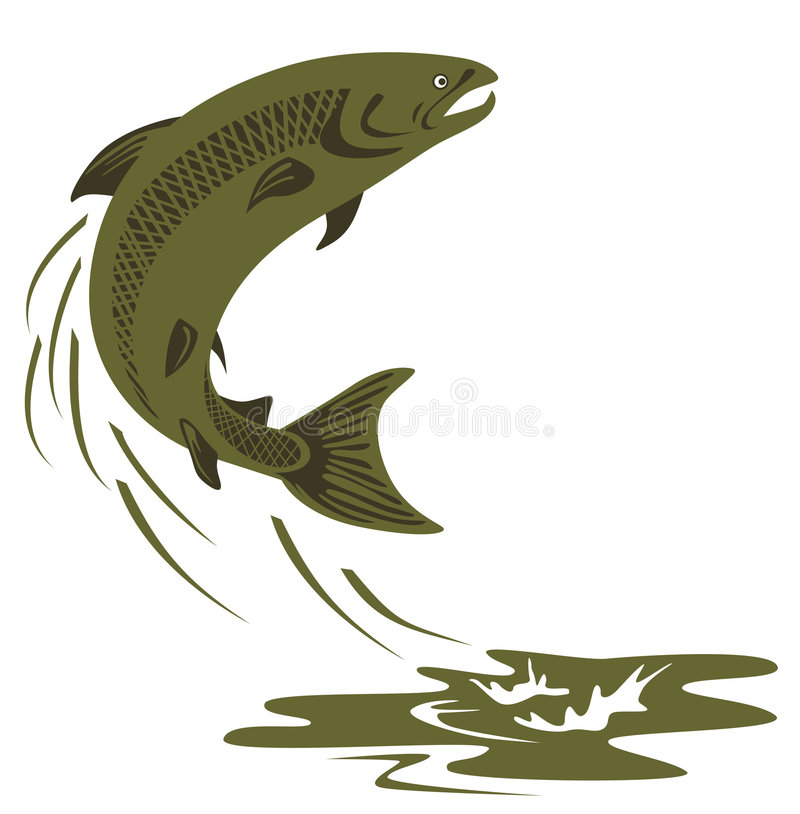 Download Atlantic salmon leaping stock vector. Image of retro, fishing - 3933132
