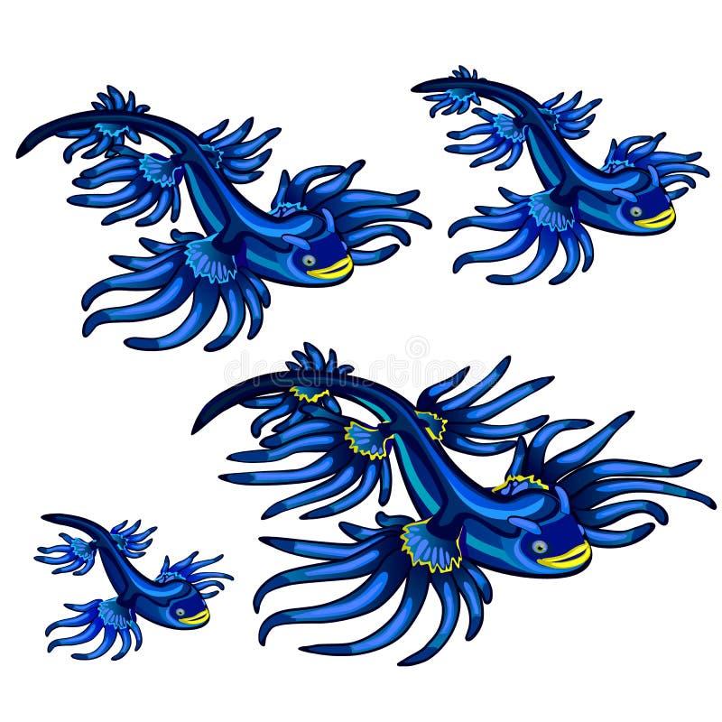 Atlanticus van Glaucus van het buikpotigeweekdier, de Blauwe die draak op witte achtergrond wordt geïsoleerd De vectorillustratie vector illustratie