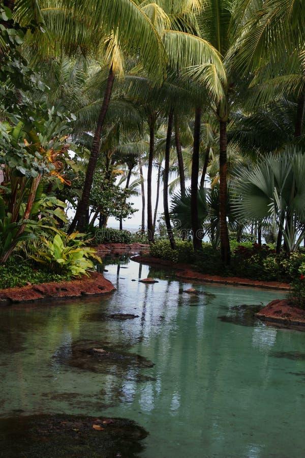 Download Atlantis stock photo. Image of remote, water, ocean, play - 4235724
