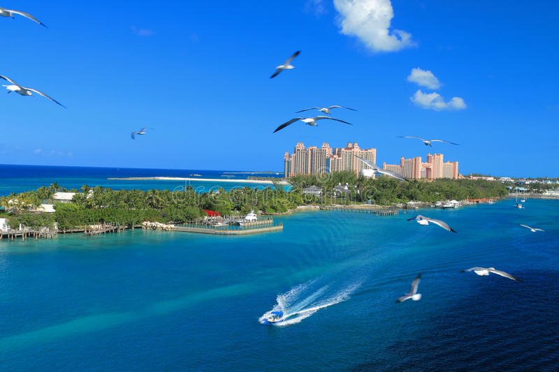 Atlantis in Bahamas royalty free stock photos