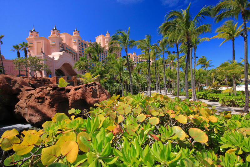 Download Atlantis Hotel In Bahamas2 Stock Photography - Image: 23799482