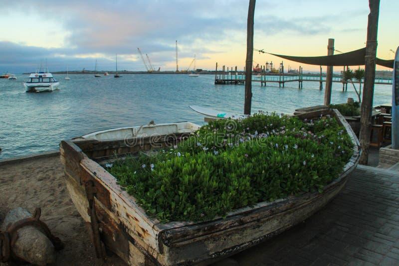 Atlantische K?stenlinie mit Anlegestelle an der D?mmerung Ursprüngliches Blumenbeet für Blumen im Boot stockbilder