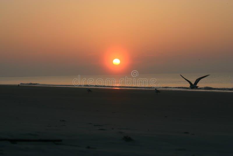 Download Atlantische zonsopgang stock afbeelding. Afbeelding bestaande uit oceaan - 288979