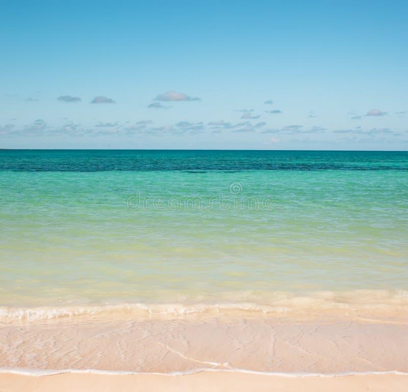 Atlantycka ocean plaża obrazy royalty free