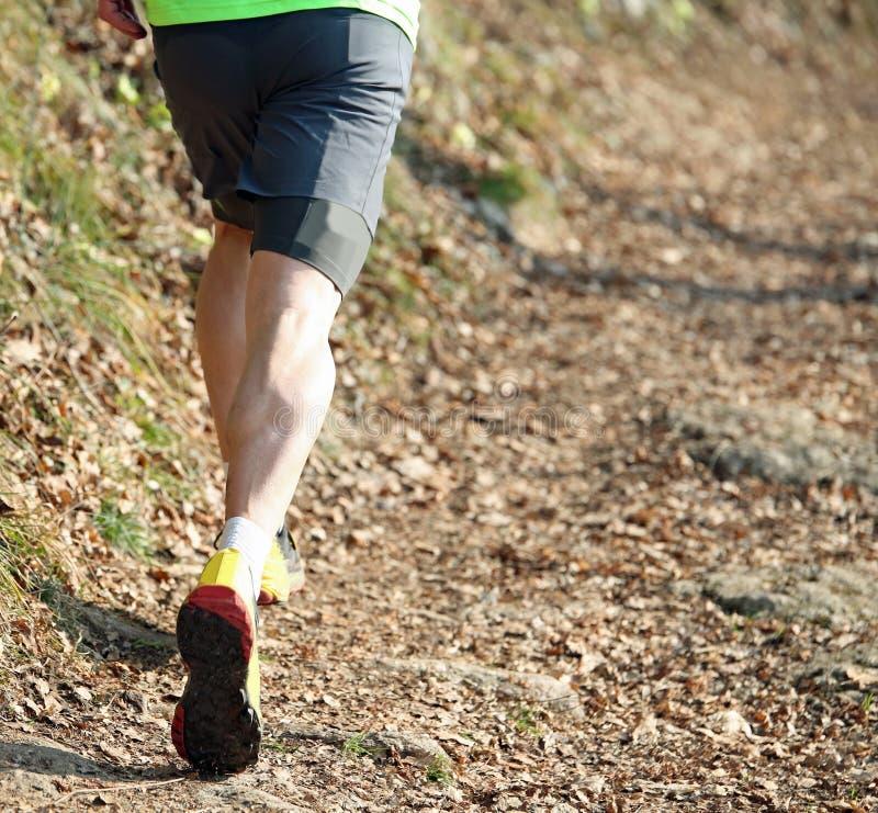 atleet tijdens een veldlopenras op de weg in m royalty-vrije stock foto's