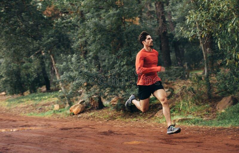 Atleta bieg w parku zdjęcia royalty free