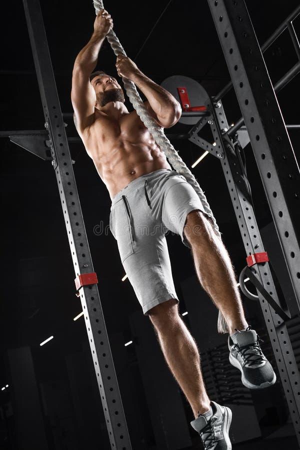 Atleta de Crossfit que escala acima a corda no gym Homem muscular que faz o exercício, Abs despido do torso foto de stock