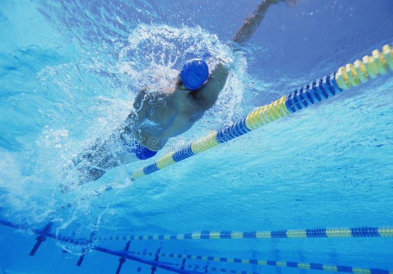 Atleta de sexo masculino profesional joven que hace espalda en piscina foto de archivo libre de regalías