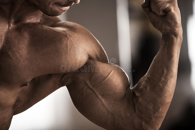 Atleta de sexo masculino que muestra el bíceps imágenes de archivo libres de regalías