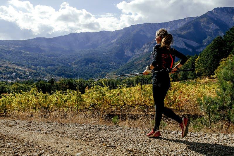 atleta del corredor de la muchacha que corre en el viñedo de Sun Valley foto de archivo libre de regalías