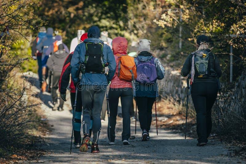 Atleta del grupo con los palillos a caminar comenzado foto de archivo libre de regalías