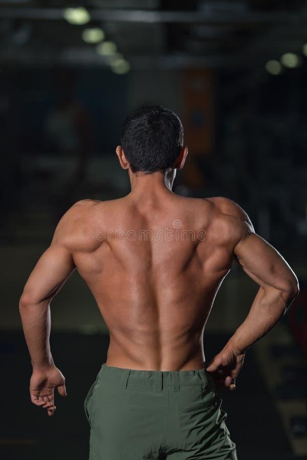 Atleta fuerte con el cuerpo muscular, visión trasera imagen de archivo libre de regalías