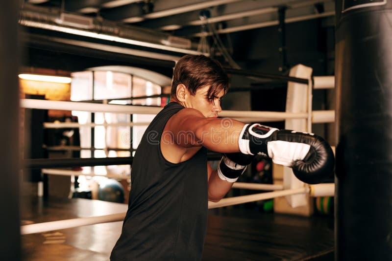 Atleta muscolare che risolve in una palestra fotografia stock libera da diritti