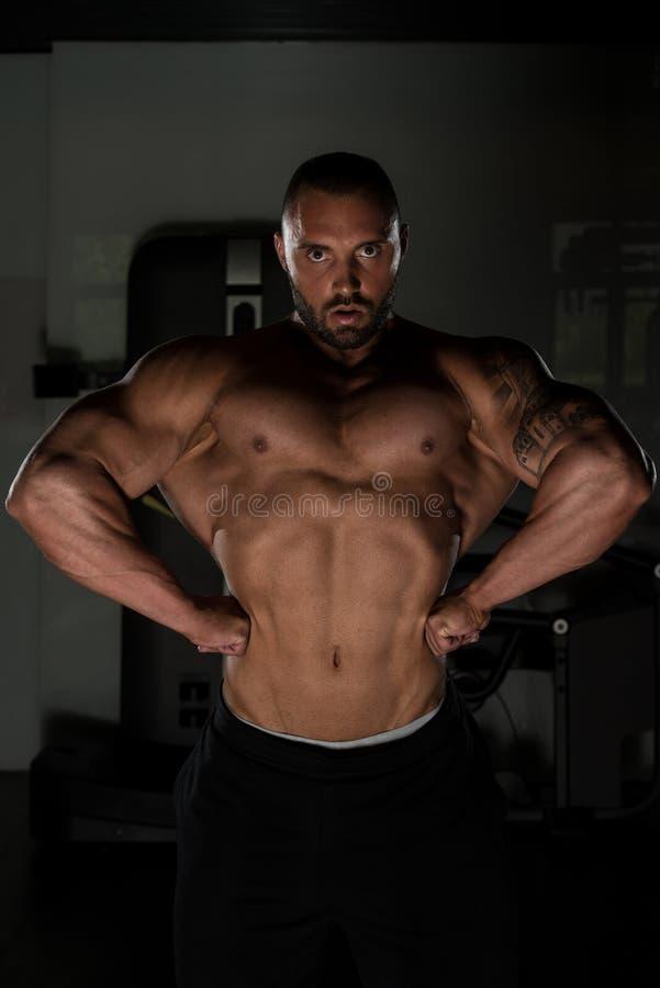 Atleta Muscular Bodybuilder Posing no Gym fotografia de stock