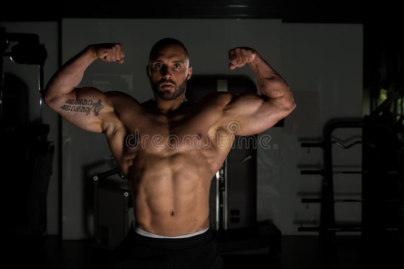 Atleta Muscular Bodybuilder Posing no Gym imagem de stock royalty free