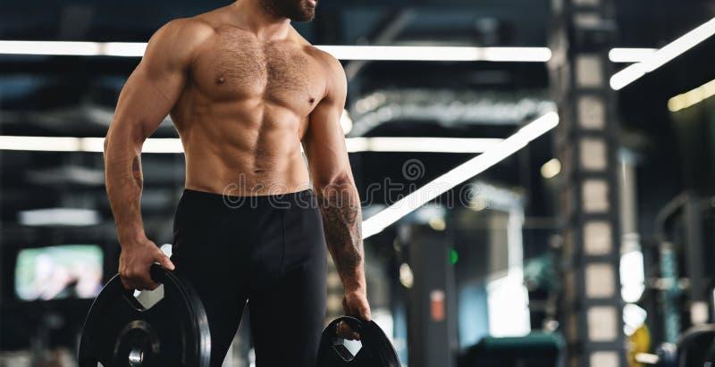 Atleta muscular com as placas despidas do barbell da terra arrendada do torso fotografia de stock royalty free
