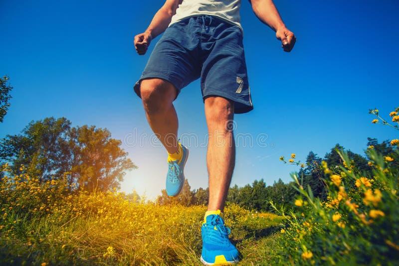 Atleta que corre através do prado fotografia de stock