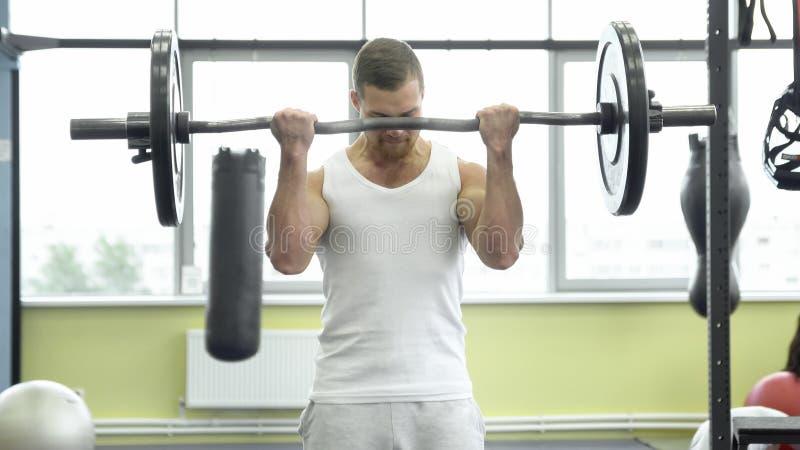 Atleta que faz o exercício para o bíceps com barbell Trens musculares novos do homem no gym fotografia de stock royalty free