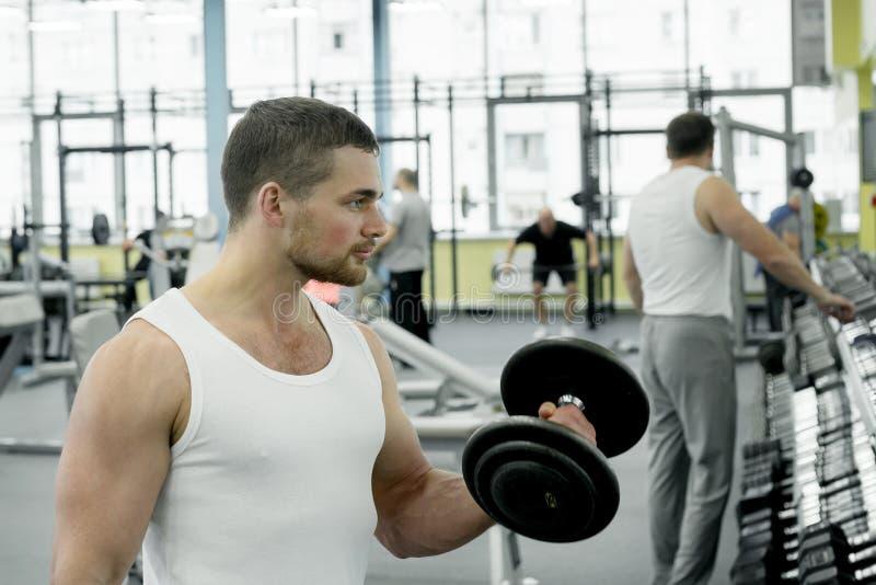Atleta que faz o exercício para o bíceps com os pesos que sentam-se em um banco Trens musculares novos do homem no gym imagens de stock royalty free