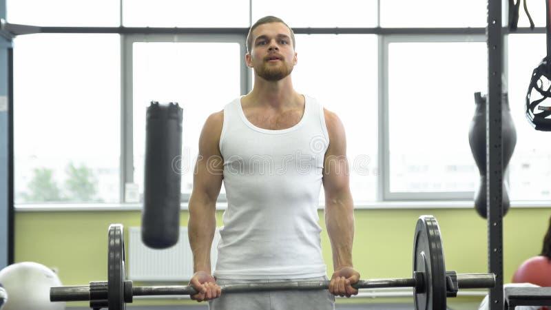 Atleta que hace el ejercicio para el bíceps con el barbell Trenes musculares jovenes del hombre en el gimnasio imagenes de archivo