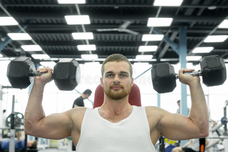 Atleta que hace el ejercicio para los hombros con las pesas de gimnasia que se sientan en un banco Trenes musculares jovenes del  imagen de archivo libre de regalías