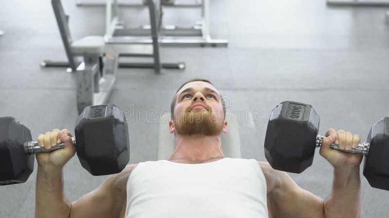 Atleta que hace el ejercicio para el pecho con pesas de gimnasia Trenes musculares jovenes del hombre en el gimnasio fotografía de archivo