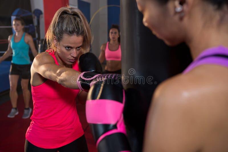 Atleta que sostiene el bolso mientras que perforación femenina del boxeador foto de archivo libre de regalías