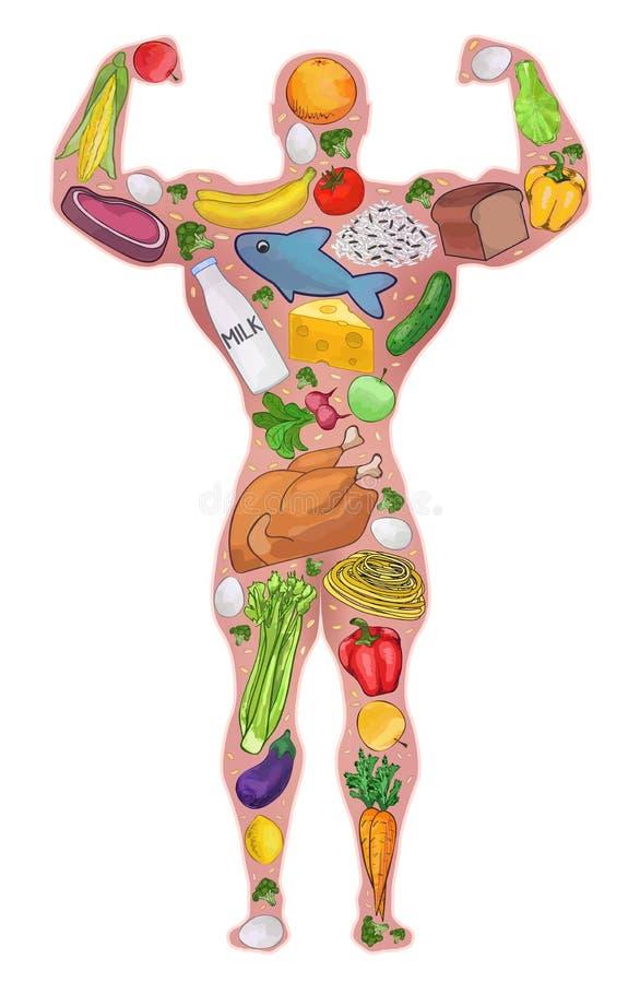 Atleta, zdrowy mężczyzna, jedzenie dieta również zwrócić corel ilustracji wektora ilustracji