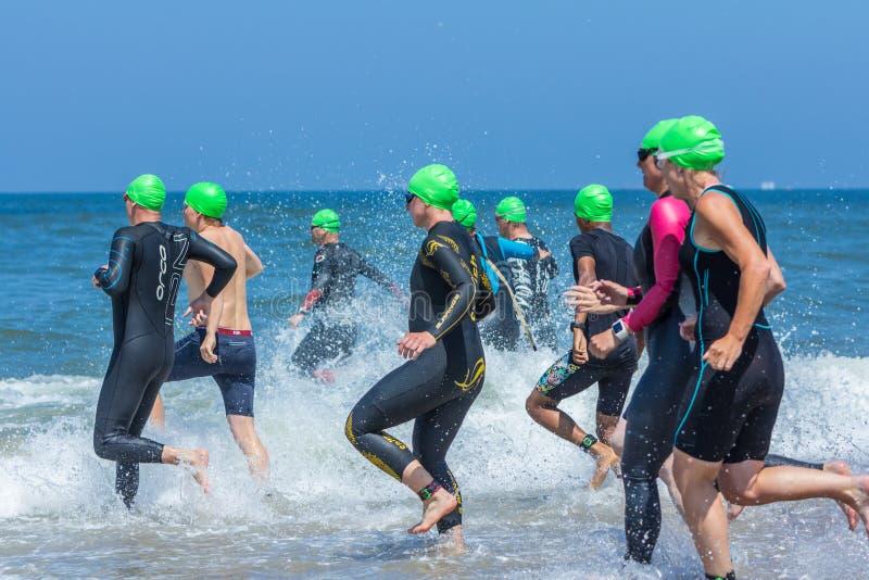 Atletas do Triathlon que correm no mar para o swimleg imagem de stock royalty free
