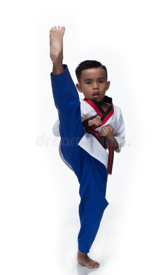 Atletas mestres de TaeKwonDo da correia que lutam o menino da pose fotos de stock royalty free