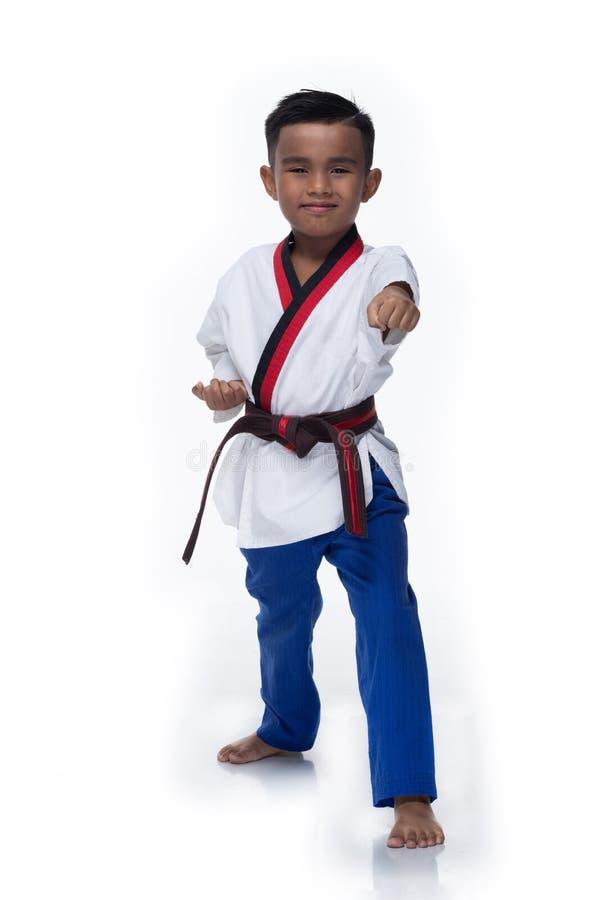 Atletas mestres de TaeKwonDo da correia que lutam o menino da pose imagens de stock royalty free