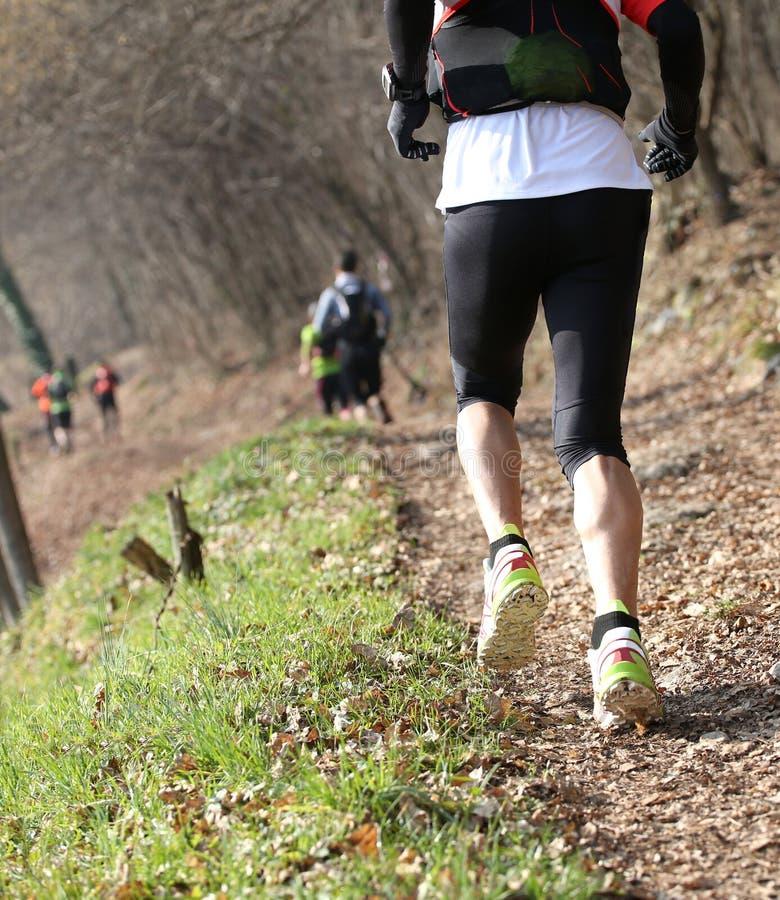Atleti che eseguono la corsa nella traccia di montagna nell'inverno fotografie stock libere da diritti