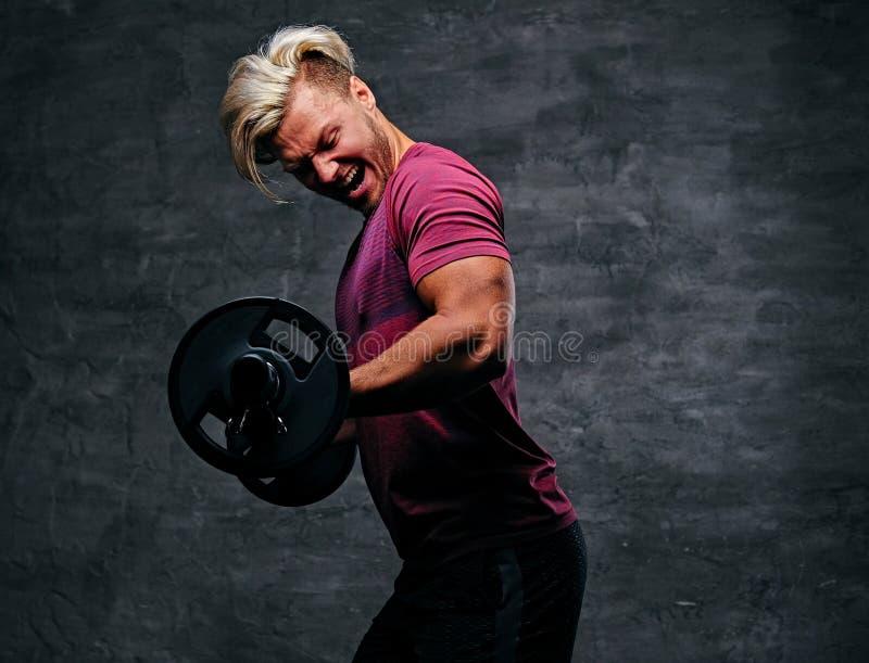 Atletisch blond mannetje die een bicepsentraining met een barbell doen stock foto's