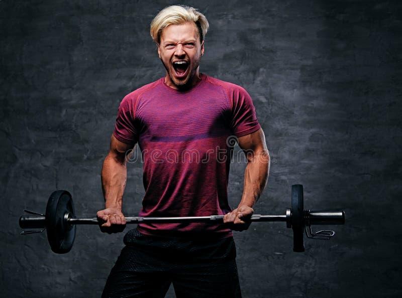 Atletisch blond mannetje die een bicepsentraining met een barbell doen royalty-vrije stock fotografie