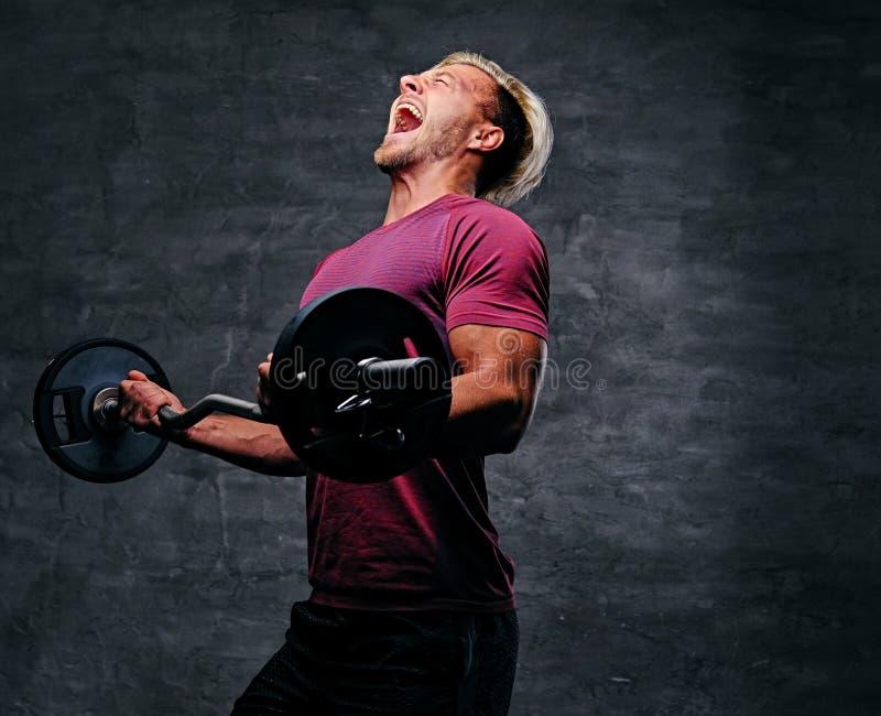 Atletisch blond mannetje die een bicepsentraining met een barbell doen royalty-vrije stock afbeeldingen