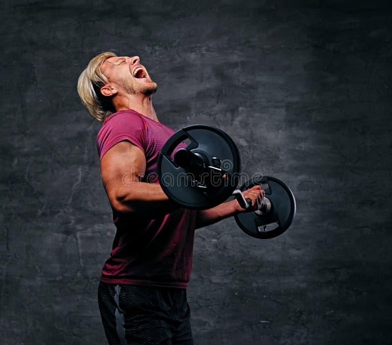 Atletisch blond mannetje die een bicepsentraining met een barbell doen stock foto