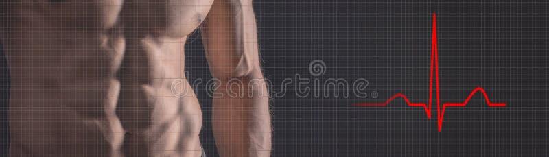 Atletische sterke mens De geschiktheidsmens van het hartslagelektrocardiogram FI royalty-vrije stock foto's