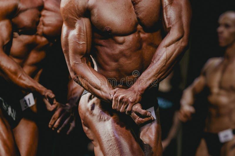 Atlety bodybuilder zdjęcia stock