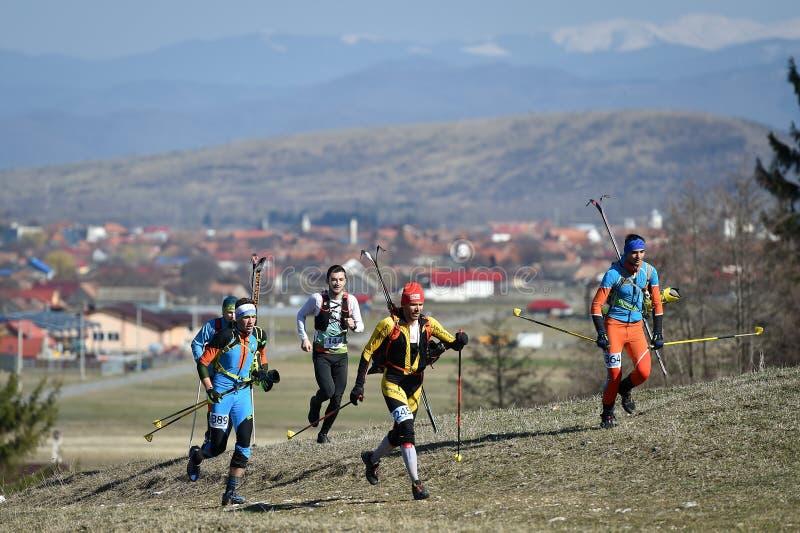 Atlety współzawodniczą podczas wiosny narciarskiego krajoznawstwa i wlec bieg zdjęcie royalty free