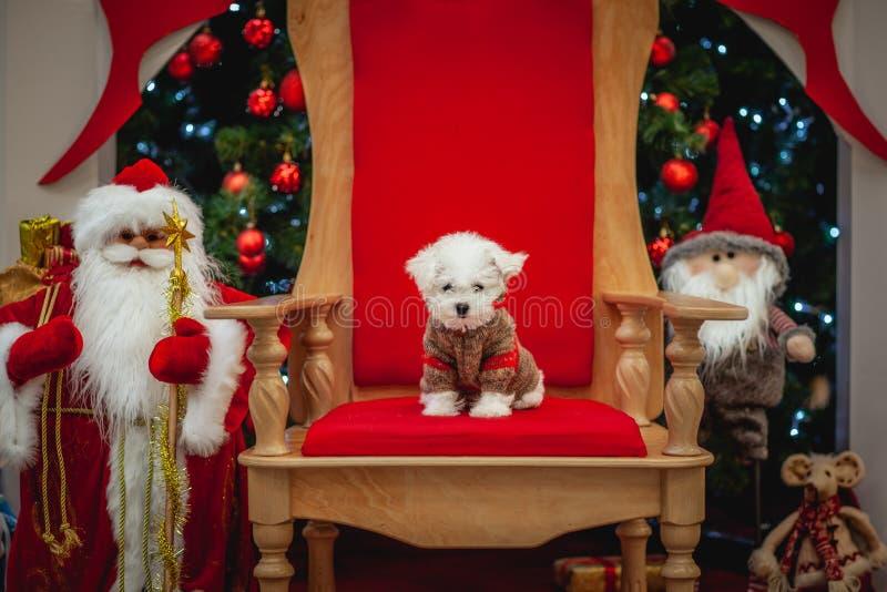 Atmósfera de la Navidad, decoraciones del Año Nuevo Papá Noel _2 fotos de archivo libres de regalías