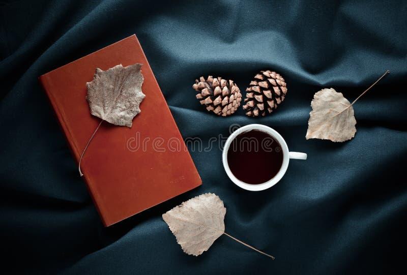 Atmósfera del invierno del otoño Una taza de té, hojas secas, conos del pino imágenes de archivo libres de regalías