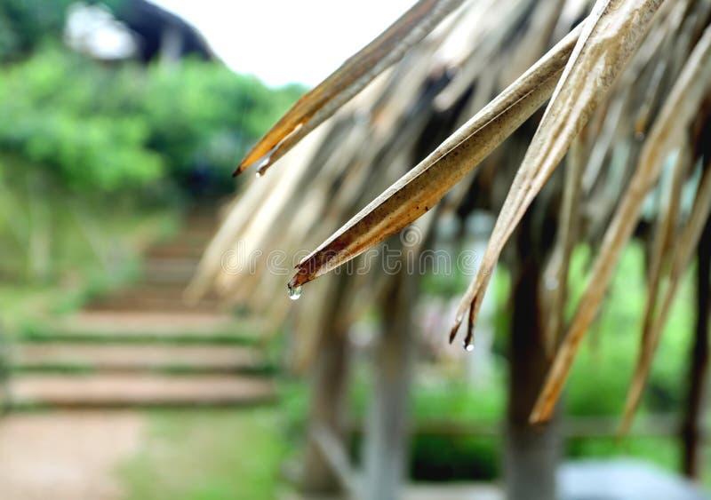 Atmósfera en la lluvia, fotografía de archivo libre de regalías