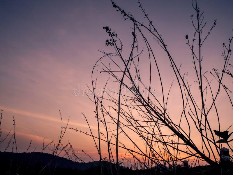Atmosfäriskt landskap med konturer av berg, kullar, skog på solnedgången royaltyfria foton