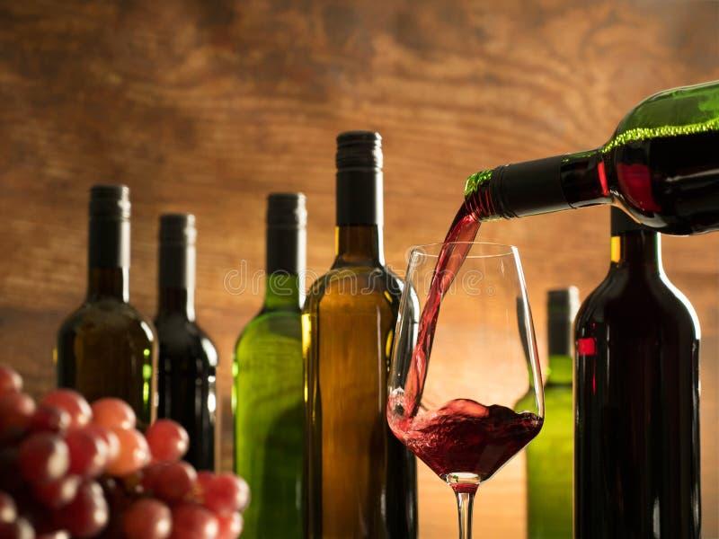 Atmosfera dell'assaggio di vino in una cantina della cantina che versa appena vino rosso in un vetro davanti alle bottiglie di vi fotografia stock