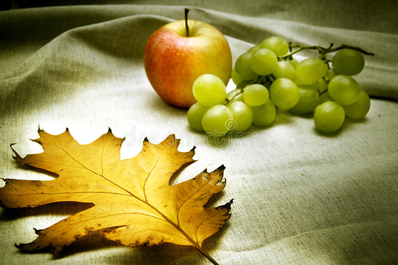 Atmosfera do outono fotografia de stock royalty free