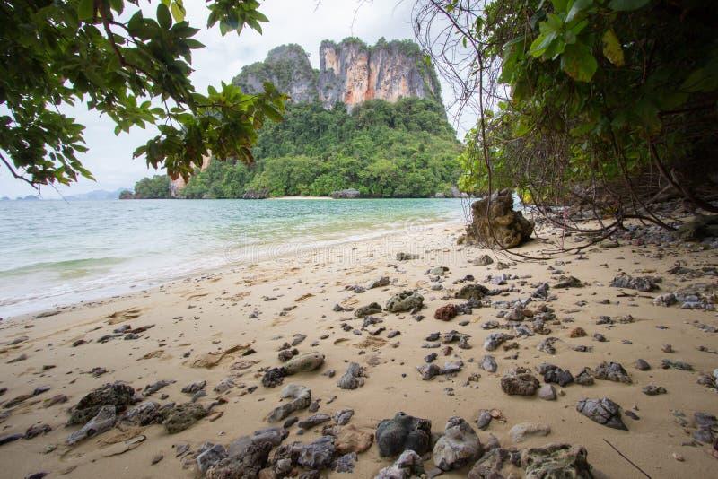 Atmosfera piacevole ed ombreggiata cristallina dell'acqua di mare, a Phak Bia Island, distretto di Ao Luek, Tailandia fotografia stock