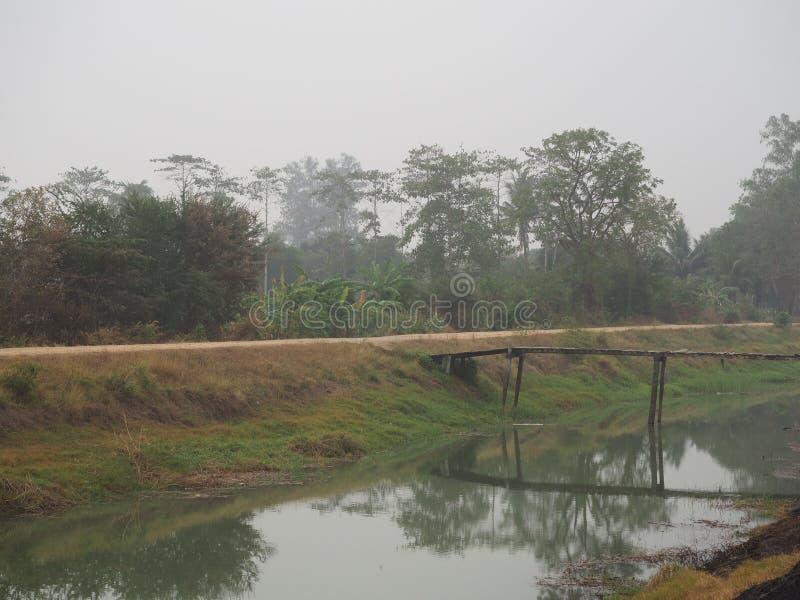 Atmosferische landelijk met mistige ochtend stock foto's