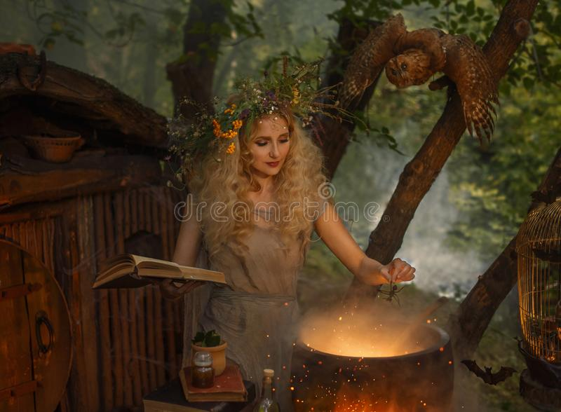 Atmospheric warm autumn art processing photo, young forest fairy in an old gray linen dress and has a wreath on her head royalty free stock photos