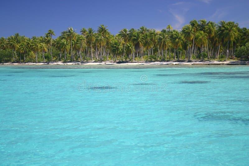 Atoll Rangiroa dans la Polynésie française images libres de droits